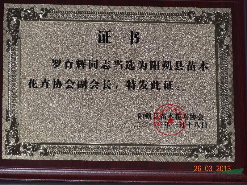 阳朔县苗木花卉协会副会长