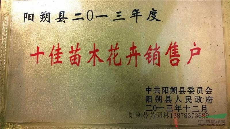 2013年阳朔县十佳销售户
